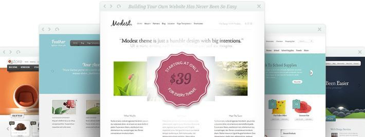 Goedkope WordPress themes