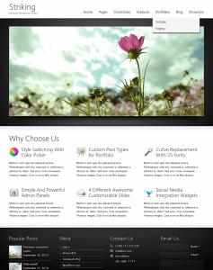 Striking WordPress theme