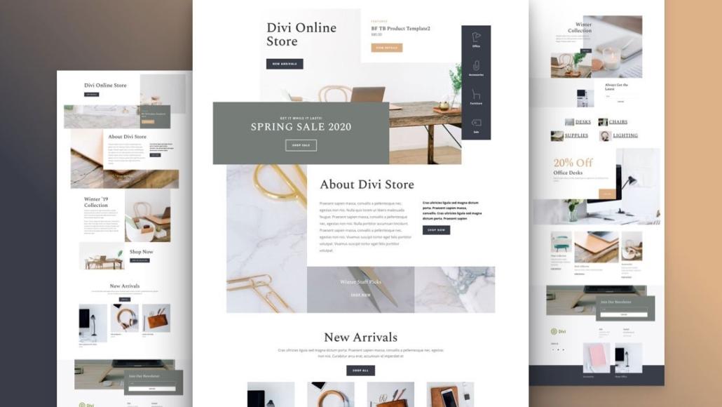 WordPress webshop theme: Divi